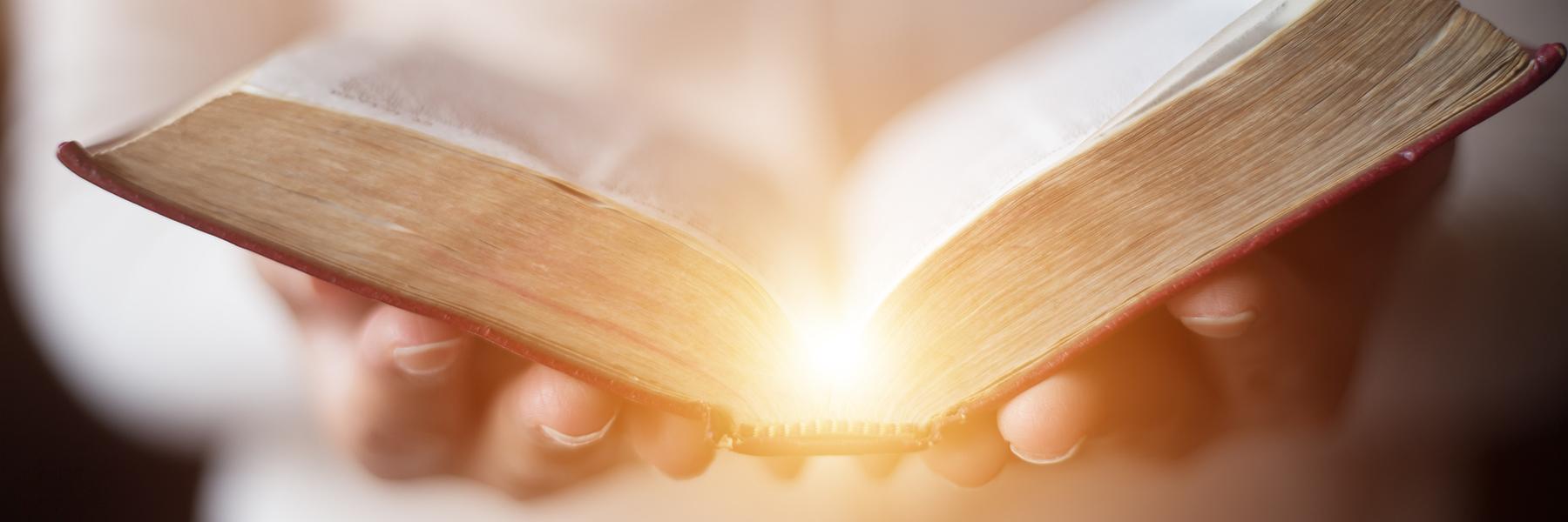 El santo brief, ¿mito, leyenda o realidad?